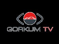 IFFG_Logo_GorkumTV.png